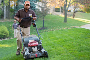 - Lawnscape Mowing By Blade The The By - Blade -