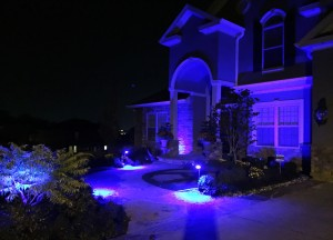 Living Illuminators Outdoor Of