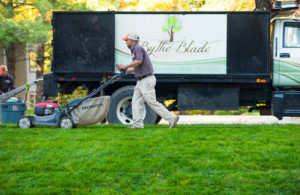 lawn care kansas city