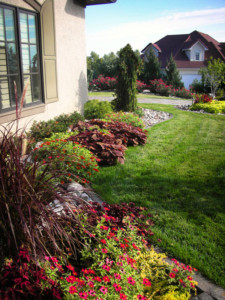 Sustainable Landscaping in Kansas City