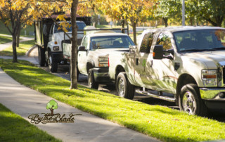 Kansas City Autumn Landscaping