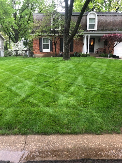 Fall Tips for a Healthy, Hassle-Free Spring Lawn
