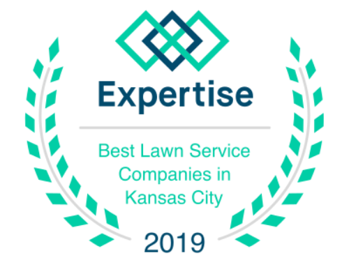 By The Blade Kansas City Chosen as a Top Landscaper