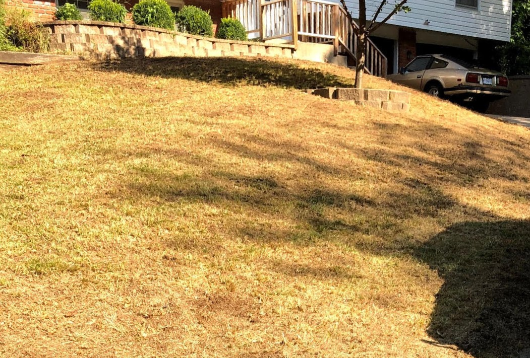 Is The | The Lawn A to Jumpstart Fall Healthy Perfect Time By Blade Spring